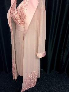 Pink Gown with long shawl